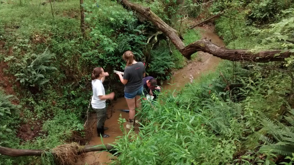 Sara & Kim, students at UNC - Charlotte, assess stream health