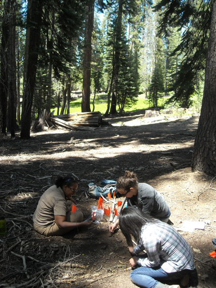 Berhe with grad student Rebecca and Undergrad student Laura at the Kings River Experimental Watershed, Southern Sierra Nevada